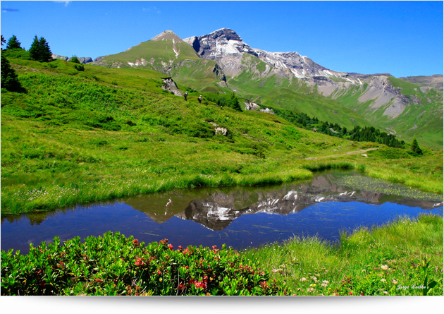 Sommeraktivitäten Grindelwald